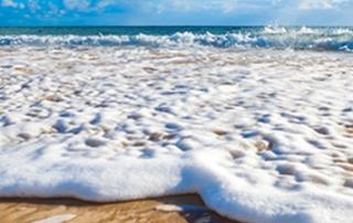 De mooiste geheime stranden van Sydney!